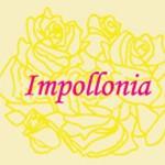 Impollonia Fiorista | Palermo