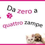 Da zero a Quattro Zampe | Palermo